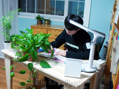 A student studies in a room furnished with Pothos and other air-purifying plants. (Park Min-young/ The Korea Herald)
