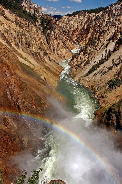 A rainbow arcs over the canyon at the Lower Falls of the Yellowstone River in Yellowstone National Park.(MCT)