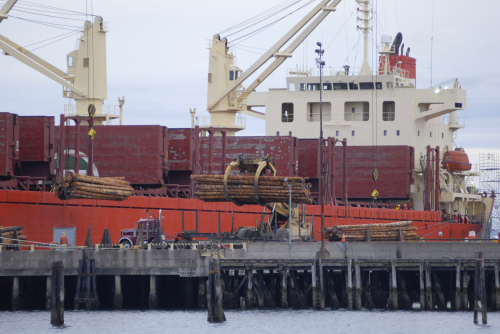 Logs bound for China are loaded aboard the freighter STX Pioneer at the Port of Port Angeles in Washington. (AP-Yonhap News)