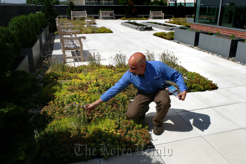 """""""Green Roof"""" specialist Rob Schucker of R&S Landscaping, designed the rooftop garden at John Theurer Cancer Center at Hackensack University Medical Center in Hackensack, New Jersey. (The Record/MCT)"""