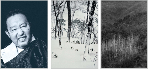 """From left: A portrait of Paik Nam-june by Kim Yong-ho, """"JEJU ISLAND MT.HALLA 2011 — CHOSUN DYNASTY"""" by Kim Jung-man, and """"Tree Series TR088"""" by Min Byung-hun, on display at the exhibition """"Koreans Spirit: six Photographers"""" now open at Goyang Aramnuri's Aram Art Gallery in Gyeonggi Province. (Aram Art Gallery)"""