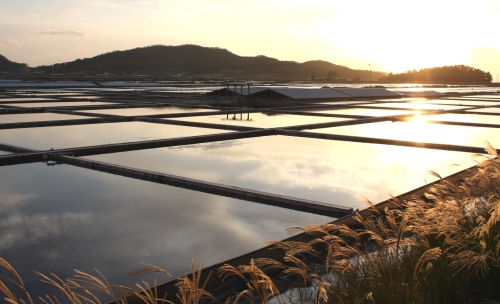 """Taepyeong Salt Farm on Jeung-do, an island located in Sinan County of South Jeolla Province. Jeungdo is Asia's first town to join the international """"Slow City"""" network. (Claire Lee/The Korea Herald)"""