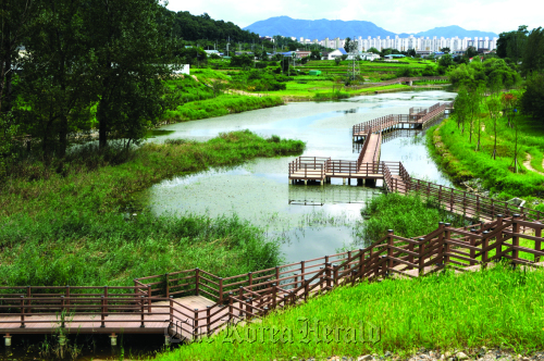 Neungam Wetland Park near Namhan River in Chungju, North Chungcheong Province Environment Ministry