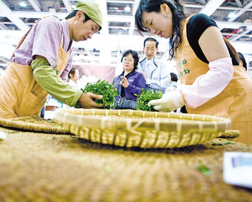 Participants roast the the picked tea leaves at the 2011 Daegu Tea Expo (Daegu Tea Expo)
