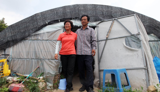 Gymnastics gold medalist Yang Hak-seon's parents walk out of their makeshift greenhouse home where they have been living for the past two years.( Yonhap News)