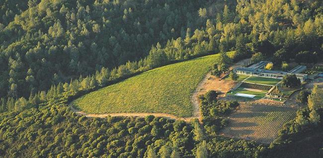 An aerial view of Lotus Vineyard (Dana Estates)