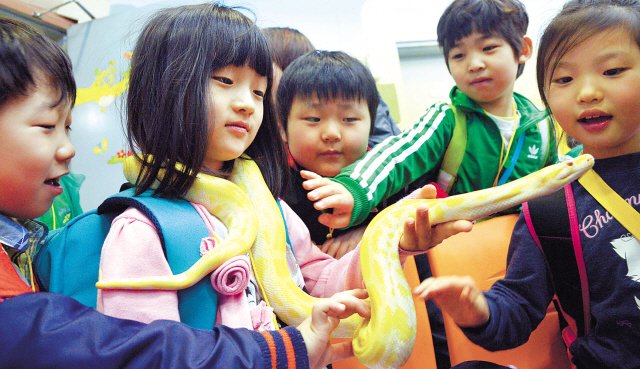 A girl holds a snake at a class for familiarizing people with animals at Children's Grand Park Zoo in Seoul on Monday. (Kim Myung-sub/The Korea Herald)