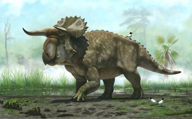 """An illustration of """"Nasutoceratops titusi"""" (AP-Yonhap News)"""