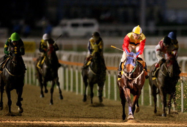 Racehorses sprint for the finishing post at Seoul Racing Park in Gwacheon. (KRA)