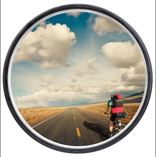 """An image from Weber's book, """"Life Is a Wheel"""""""