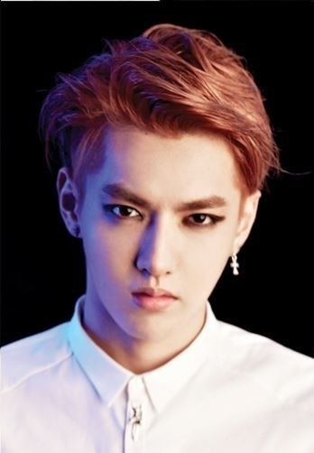 EXO-M leader Kris (SM Entertainment)