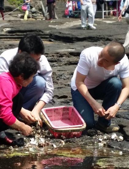 Lee (right) learns to shuck conch from a veteran woman diver in Seongsan-ri, Jejudo Island, Wednesday. (Kim Hoo-ran/The Korea Herald)