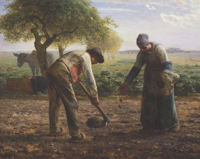 """Potato Planters"""" by Jean-Francois Millet (MFA, Boston)"""