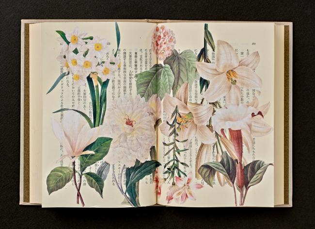 """Your Garden 4"" by Jihee Kim (Kumho Museum of Art)"