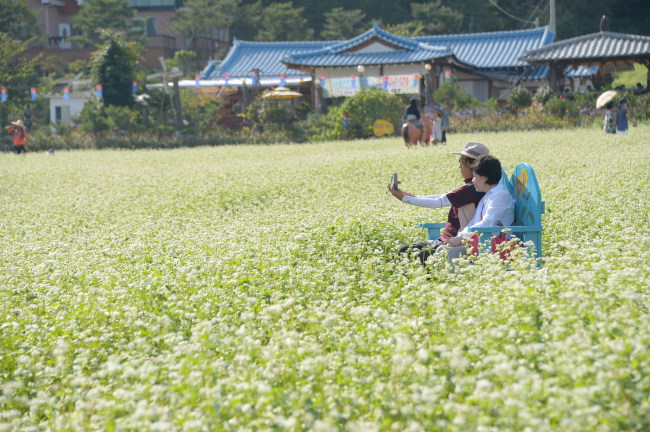 Tourists take a selfie in the field of buckwheat blossoms in Pyeongchang. (Lieto)