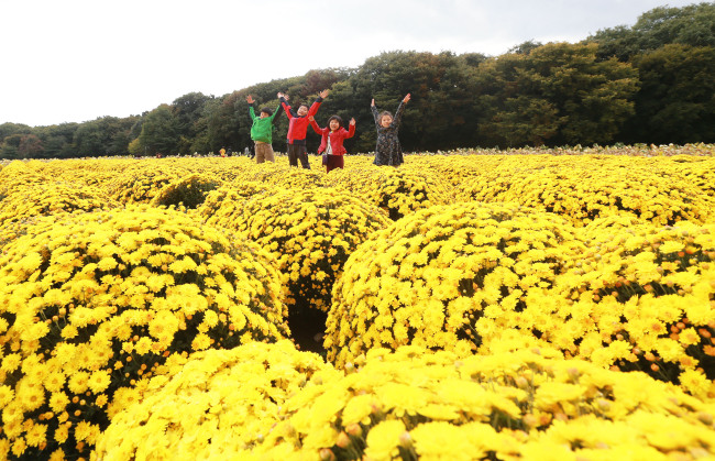 Children play with chrysanthemum flowers at Sanglim Park in Hamyang, South Gyeongsang Province. (Yonhap)