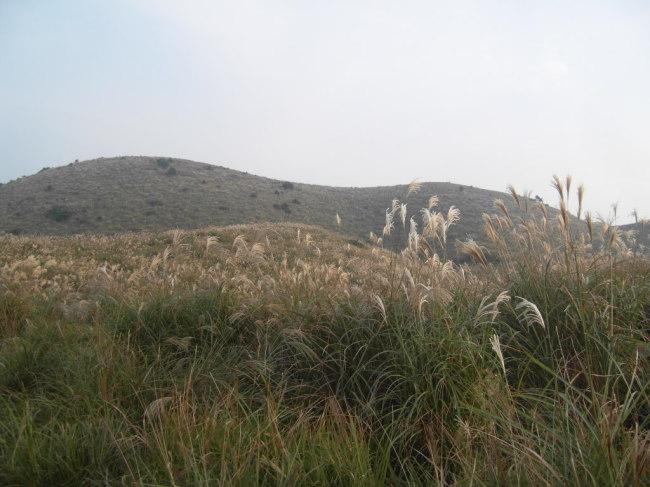 Yongnuni Oreum, or Dragon Eye Mountain (Park Hyong-ki/The Korea Herald)