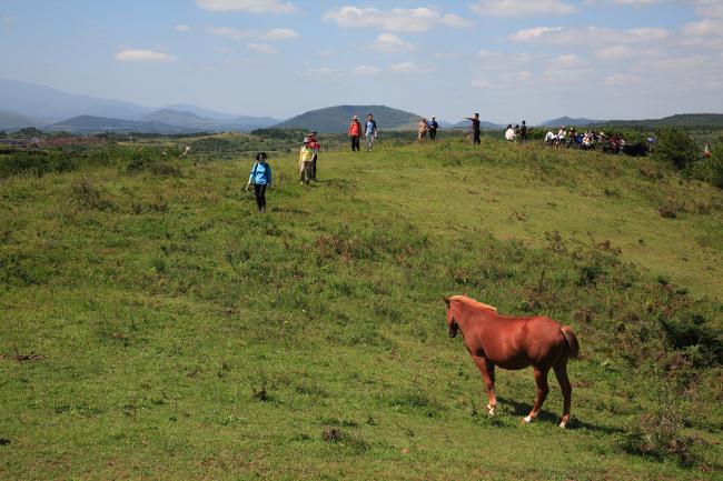 Hikers trek the Olle Trail on Jejudo Island. (Jeju Olle)