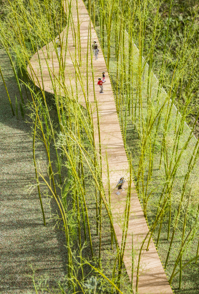 Digital rendering of the elevated walking trail proposed by Korean artist Choi Jae-eun and designed by Japanese architect Shigeru Ban. (Courtesy of artist Choi Jae-eun)