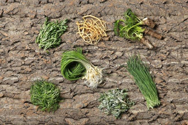 Early spring vegetables, clockwise from bottom left: saebal, dallae, donnamul, sseumbawgi, dureup, yeongyang buchu, and ssuk (Photograph by Lee Kyeng-sub)