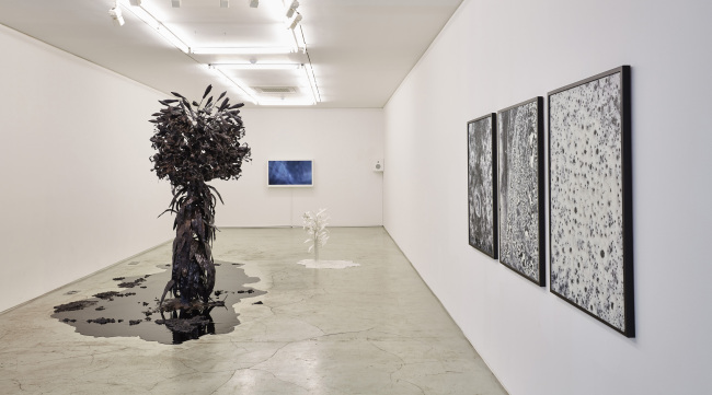 "Exhibition view of ""wellknown unknown"" at Kukje Gallery (Kukje Gallery)"