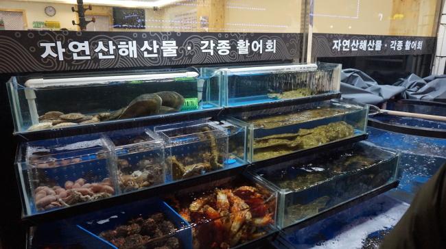 Fresh seafood tanks at Chungnyeon Soosan in Bucheon, Gyeonggi Province (Christine Cho)