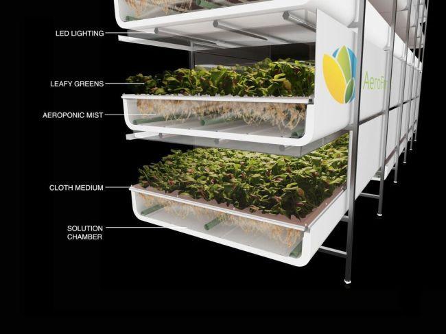 An illustrated image of AeroFarms' vertical farming. AeroFarms.
