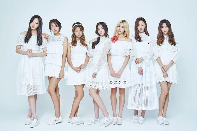 K-pop girl group Momoland (Dublekick Entertainment)