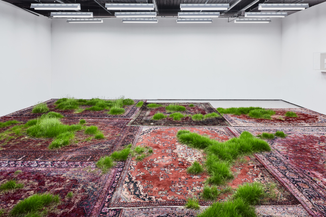 """""""Untitled (Persian Rugs)"""" by Martin Roth (Courtesy of the artist and Korean Cultural Centre UK)"""