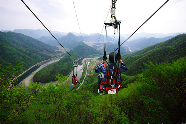Visitors zip-line by the Dong River in Jeongseon-gun (Jeongseon County)
