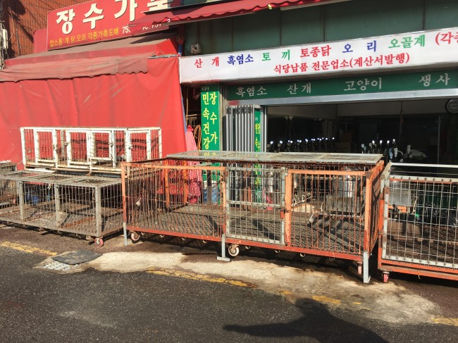 Empty cages are lined up to be removed from dog meat shops at Moran Market in Seongnam, Gyeonggi Province, Monday. (Kim Da-sol/The Korea Herald)
