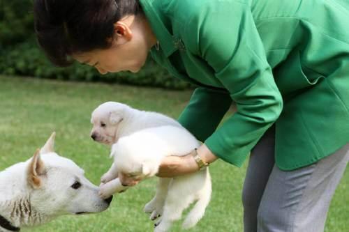 South Korean Prosecutors To Summon Park Over Corruption Scandal