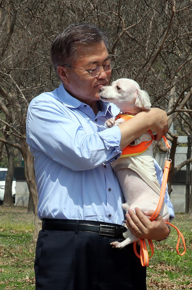 Moon Jae-in of the Democratic Party of Korea plays with a dog at an animal park in Seoul, April 15.