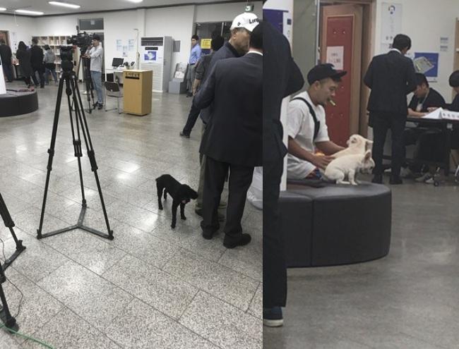 Animal lovers bring their pets to voting booths (Bak Se-hwan/The Korea Herald)