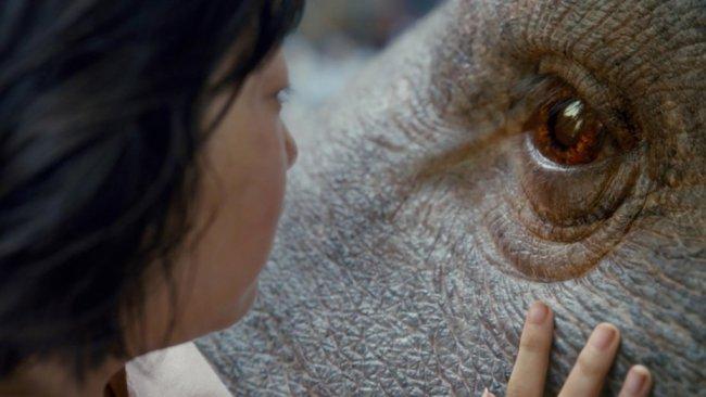 """Still from """"Okja"""" (NEW)"""