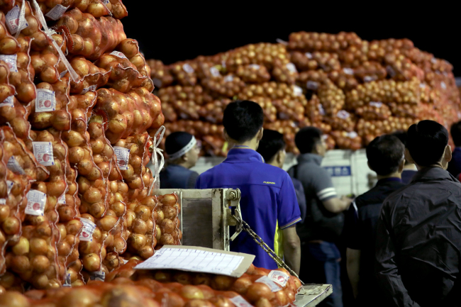 DRYING UP -- Merchants look through onions at Garak Market in Songpa-gu, southern Seoul, Monday. The wholesale prices of onions surged over 50 percent due to a drought this year. (Yonhap)