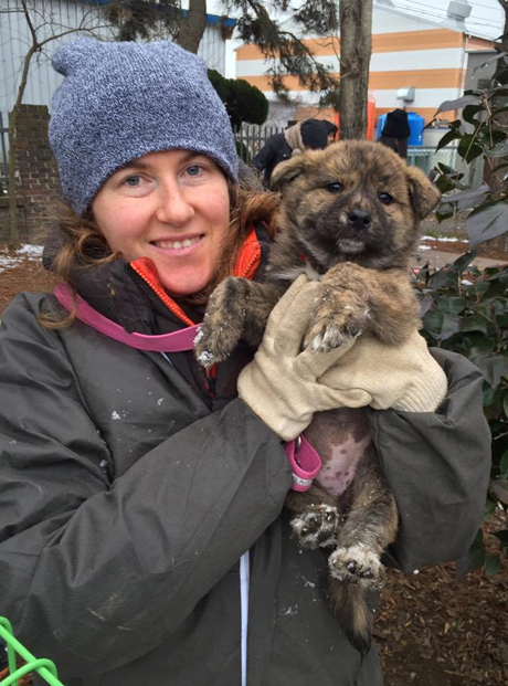 Lisa Crone with a mixed Jindo dog she later fostered out (Justice for Jindos)