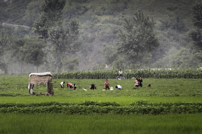 North Koreans work on farm fields along the Pyongyang-Wonsan highway on Thursday in Sangwon County, North Hwanghae Province. (AP-Yonhap)
