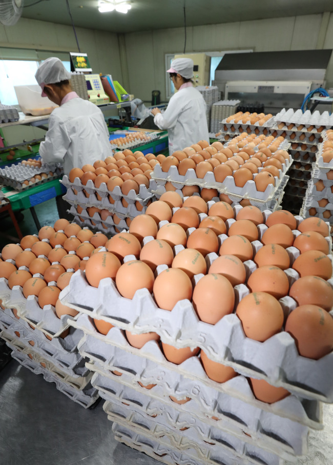 Eggs waiting to be delivered (Yonhap)