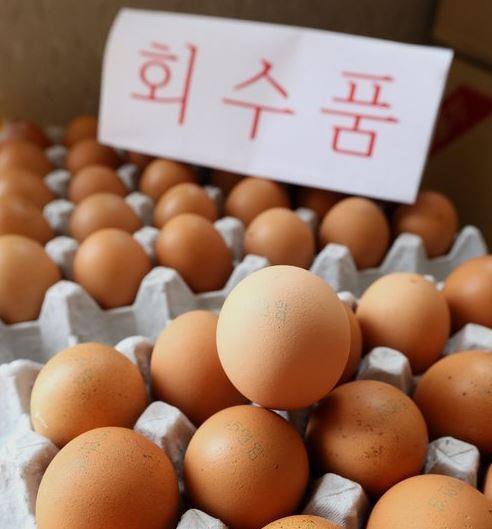 Concerns Sparked Over Egg Contamination Scandal