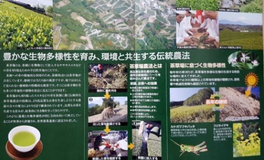 A booklet explains Chagusaba, or the tea-grass integrated farming system, designated as Japan's Globally Important Agricultural Heritage Systems by the Food and Agriculture Organization of the United Nations in 2016. Photo: Park Byung-gun