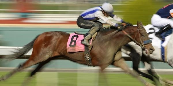 Action shot of horse racing with jockey against blurred background