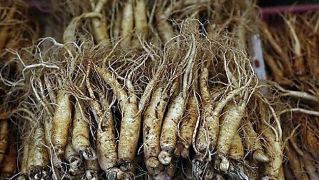 Korean ginseng (Yonhap)