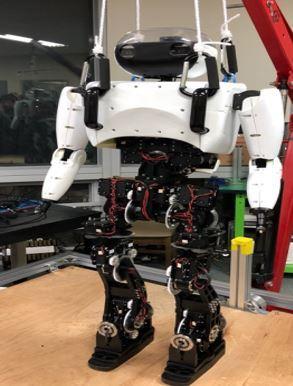 Hanyang University`s skiing robot Diana (Korea Institute for Robot Industry Advancement)