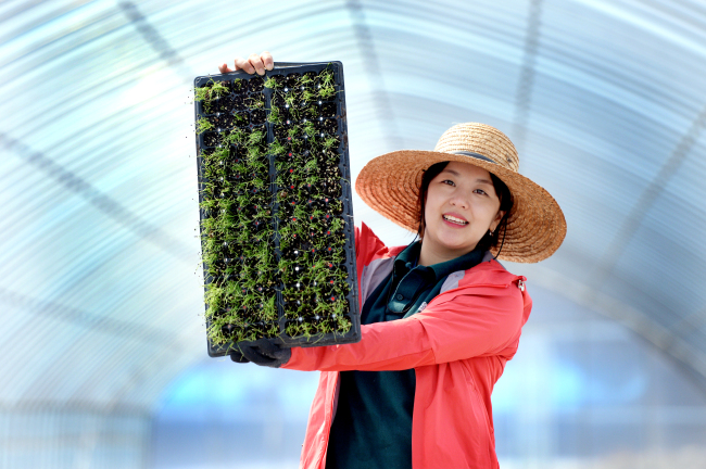 Song Ju-hee, a 29-year-old farmer, poses with the seedlings at her farm in Hwacheon, Gangwon Province. (Park Hyun-koo/The Korea Herald)