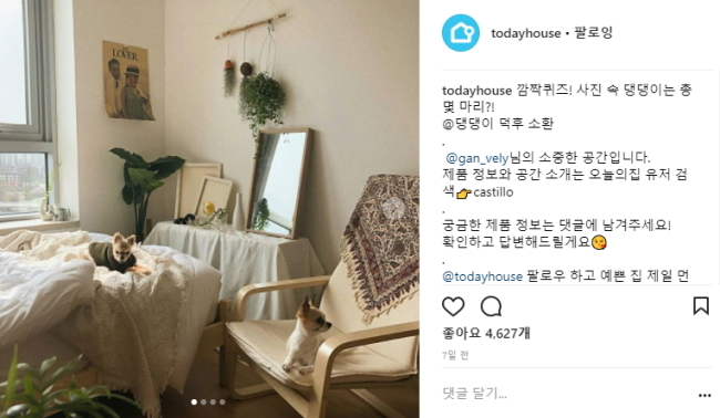 Instagram user @gan_vely decorates a studio apartment in beige-white hues, with plants hanging from the wall and two dogs perched on a bed and chair. (Instagram)