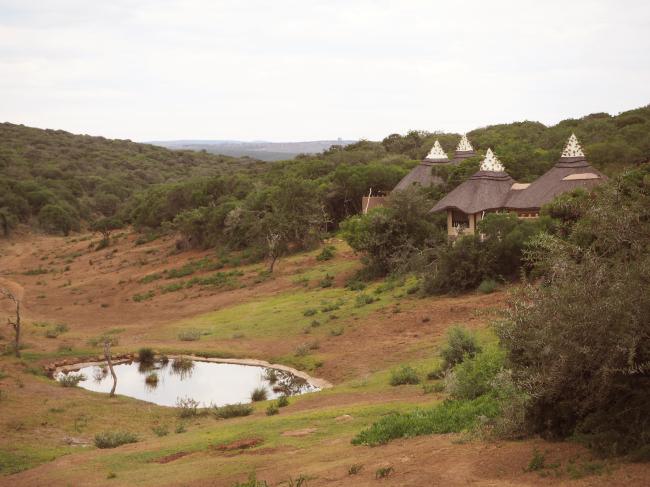 The Amakhala Safari Lodge in Eastern Cape (Joel Lee/The Korea Herald)