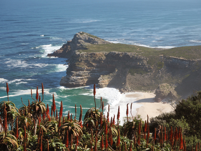 A view of the ocean and beach from the Cape of Good Hope's Old Lighthouse (Joel Lee/The Korea Herald)