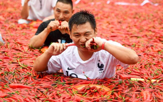 The Tabasco chili pepper, with a rating of 30,000-50,000 Scoville Heat Units, is reportedly much stronger than South Korea's cheongyang red pepper. (AFP-Yonhap)