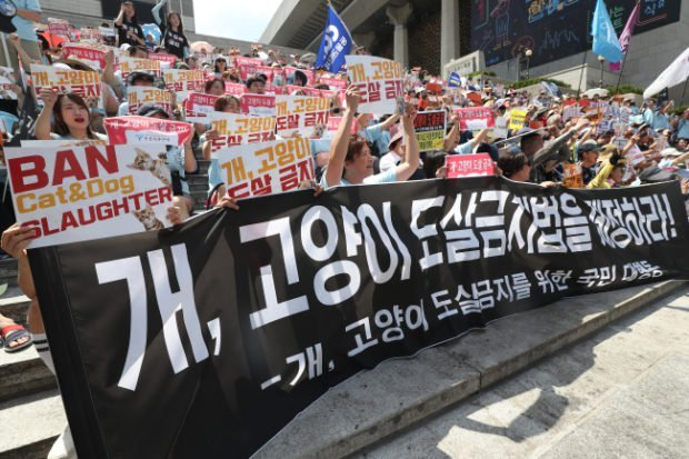 Protesters hold signs asking for the ban of cat and dog slaughter in front of Sejong Center in Jongno-gu on July 15. (Yonhap)